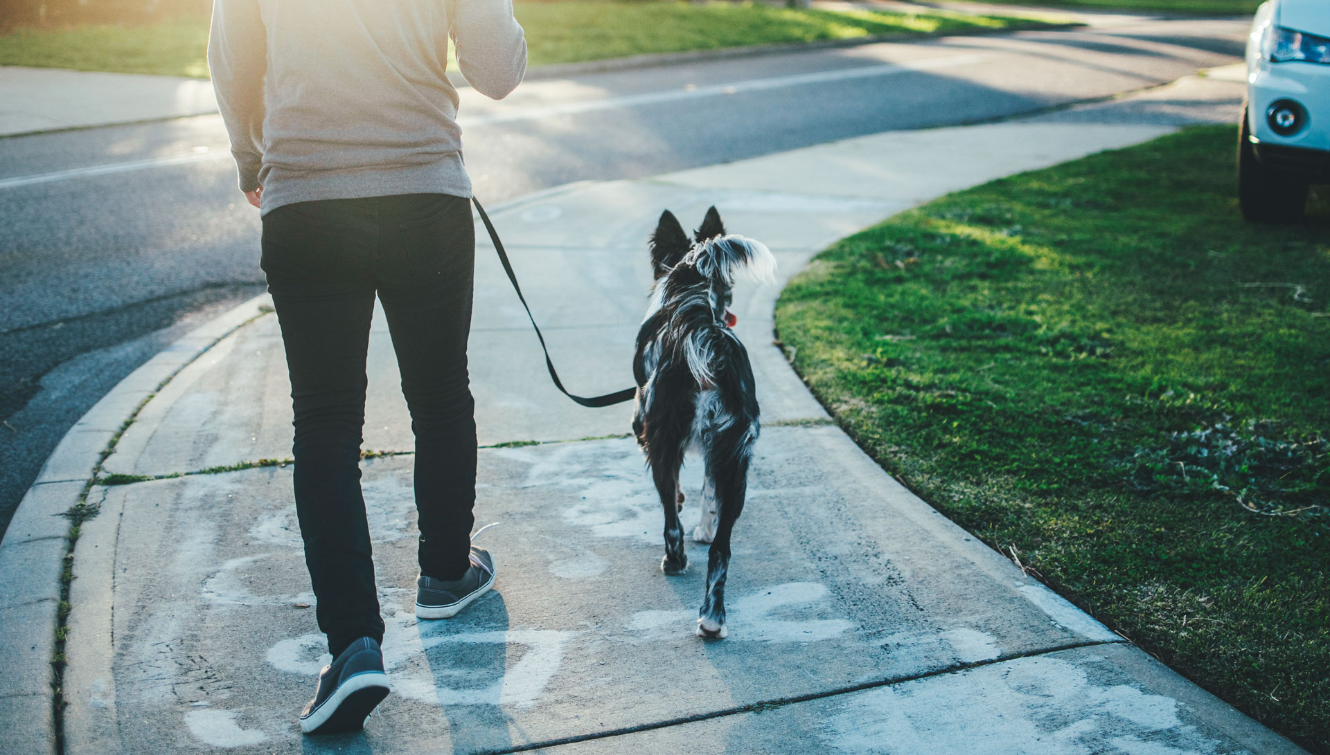 The Positive Power of Walking